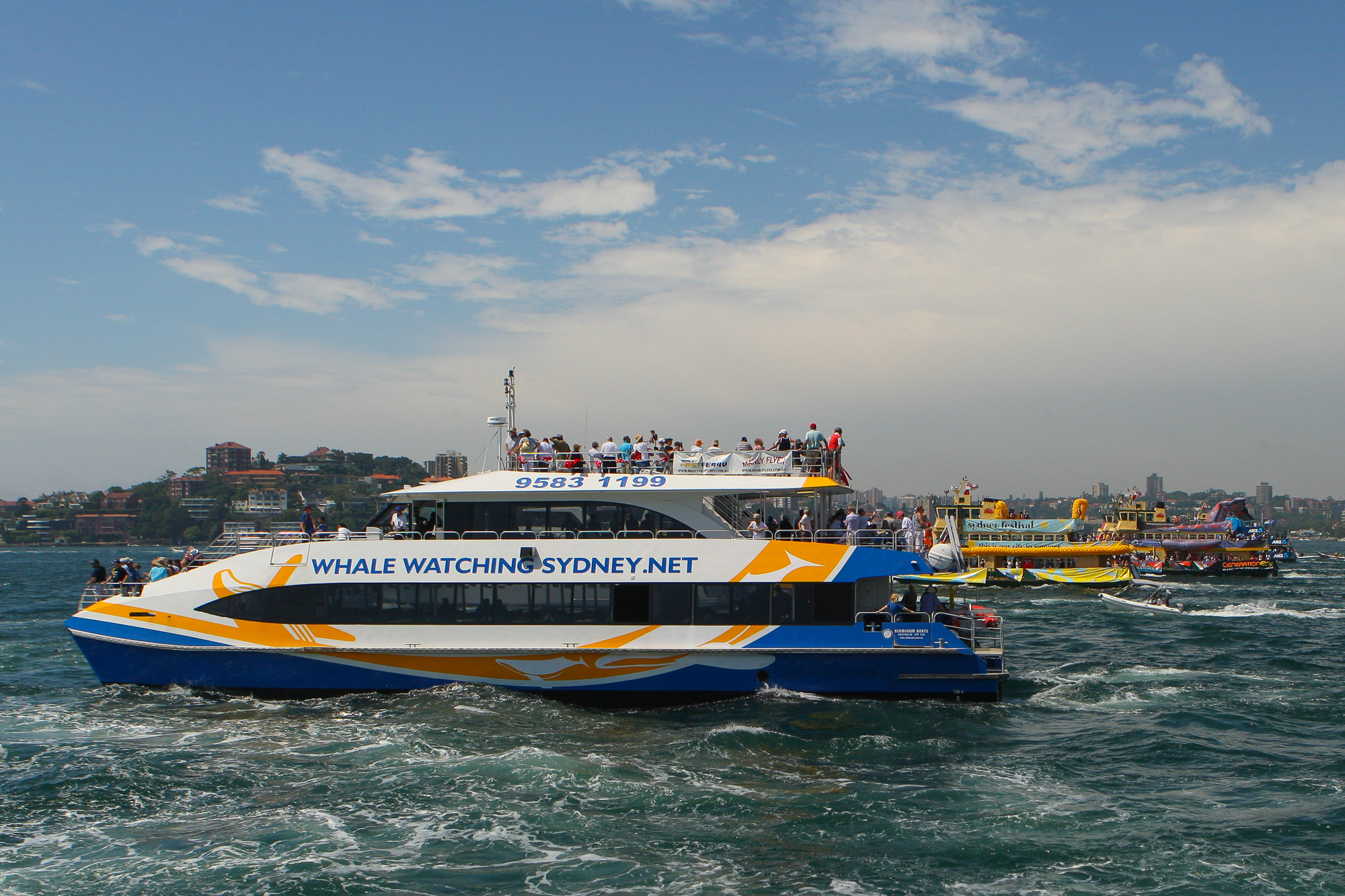 My Fast Ferry, Australia Day, Ferrython Race