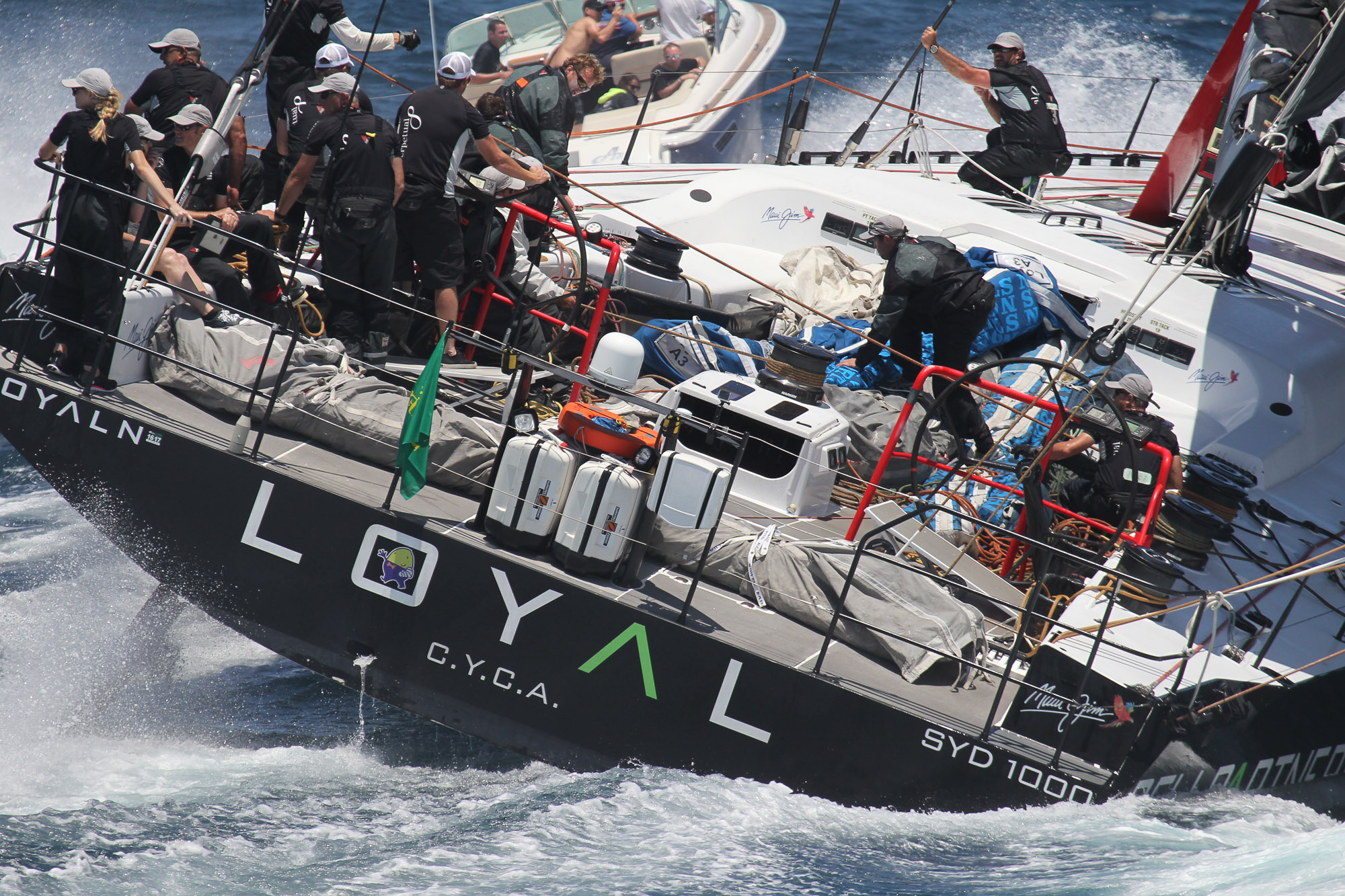 Loyal, Sydney To Hobart, Yacht Race