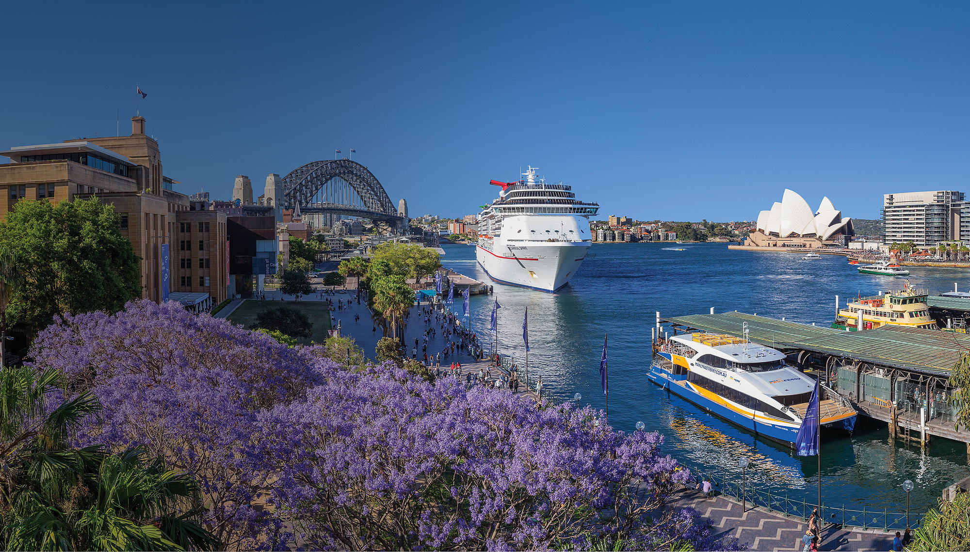Sydney Harbour Cruises, Best Sightseeing