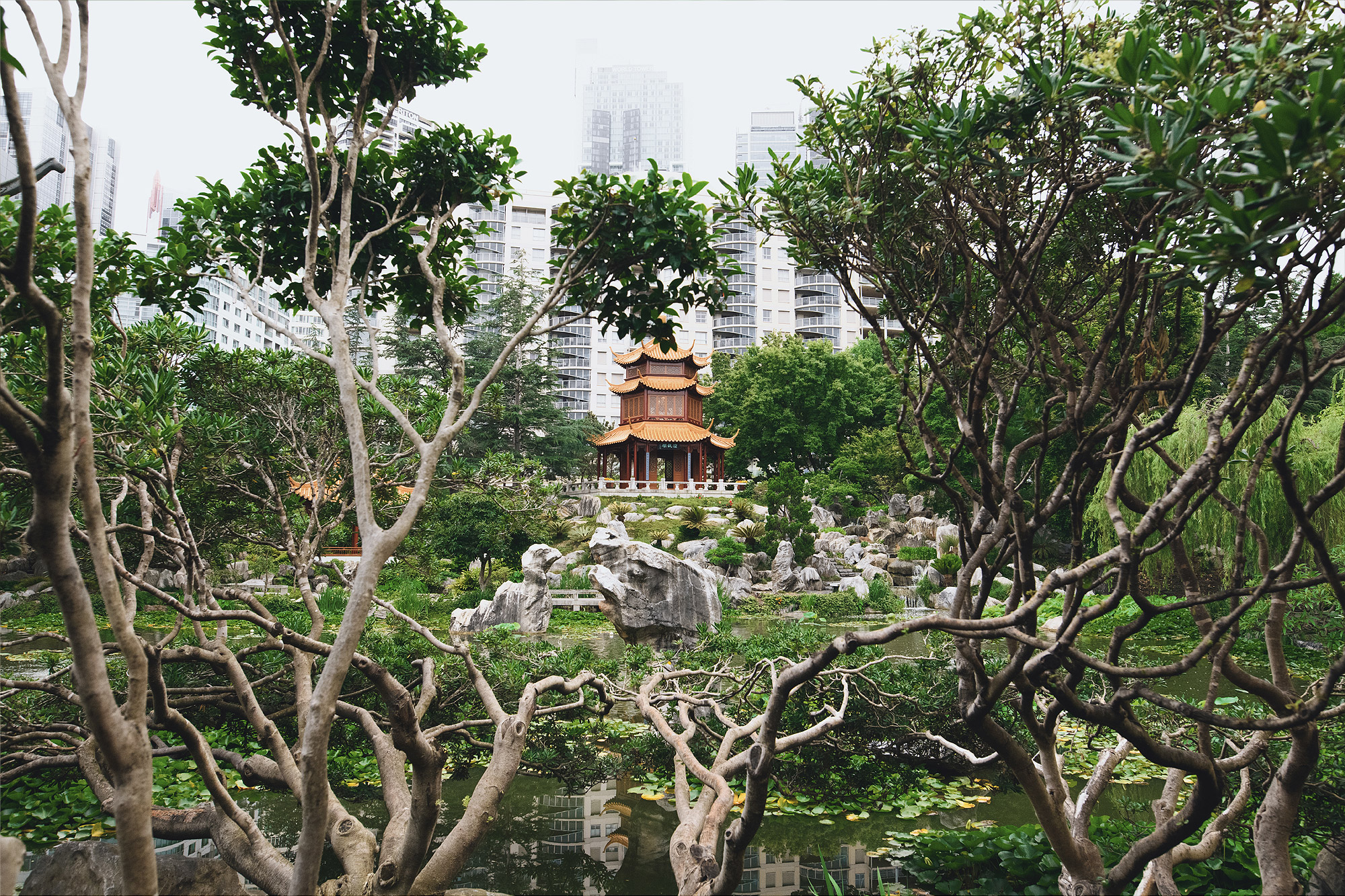 Chinese Garden of Friendship, Darling Harbour
