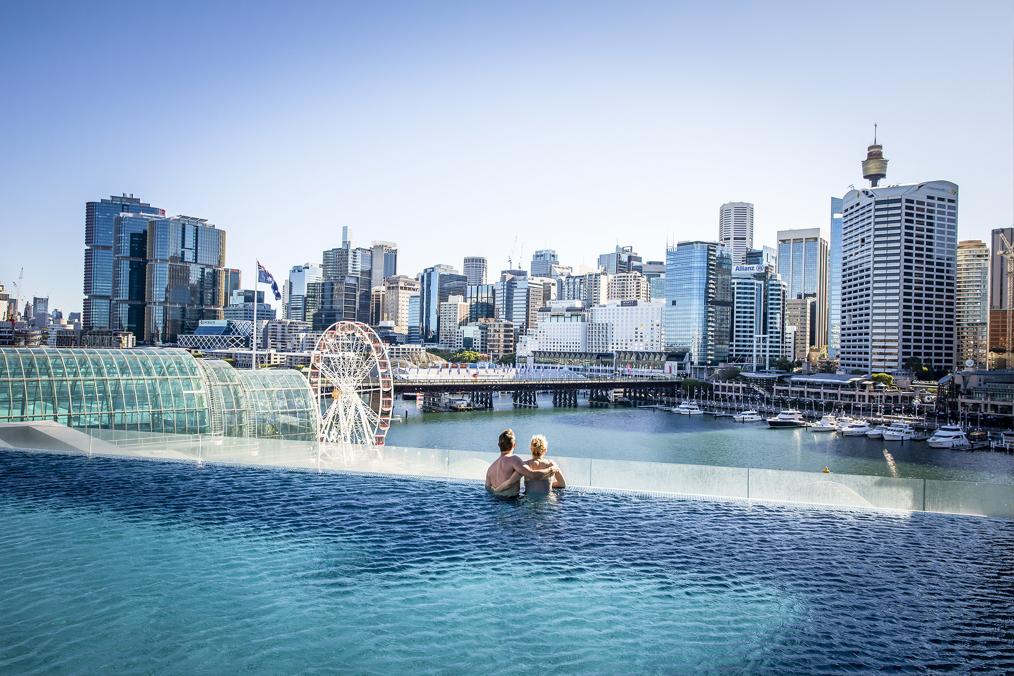 Sofitel Sydney's rooftop pool with views across Darling Harbour